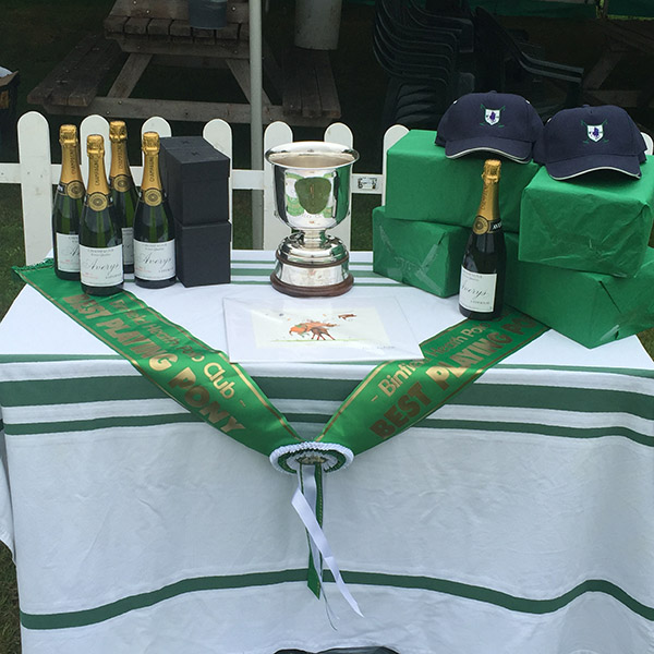 Binfield Heath Polo Club Prize Table